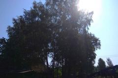 Спил-ЯрФутман-8.06-6